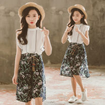 suit Other / other white 120cm,150cm,130cm,140cm,160cm,110cm female summer Korean version Long sleeve + pants 2 pieces Thin money There are models in the real shooting Socket nothing Broken flowers polyester TZM orchid suit Class B 8, 9, 10, 11, 12, 13, 14 Chinese Mainland Zhejiang Province