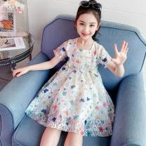 Dress Picture color female Other / other 110cm,120cm,130cm,140cm,150cm,160cm Other 100% summer princess Short sleeve Broken flowers cotton other Class B Chinese Mainland Shanghai