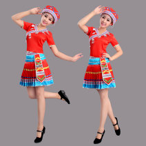 National costume / stage costume Autumn 2015 Red, dark blue S. M, l, XL, XXL, XXXL, enlarge XXXXL (customized)