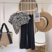 suit Other / other Leopard t suit, leopard t suit ~ pre sale 100cm / tag 5110cm / tag 7120cm / tag 9130cm / tag 11140cm / tag 13150cm / tag 15 female summer lady Short sleeve + pants 2 pieces Thin money No model Socket nothing Solid color other children Expression of love other Other 100%