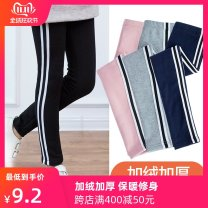 trousers Walking cloth bear female 90cm 100cm 110cm 120cm 130cm 140cm spring and autumn trousers leisure time There are models in the real shooting Leggings Leather belt middle-waisted other Don't open the crotch Cotton 95% polyurethane elastic fiber (spandex) 5% 112D Class A Autumn of 2019