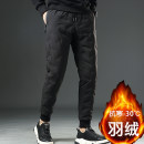 Down pants Tang Xiu 8201 black 8202 black 8203 black XXL M L XL 3XL 4XL 5XL Youth fashion trousers Wear out 80% - 89% grey duck down youth one thousand and eighty-one tide Slim fit Polyester 100% Winter 2020 winter