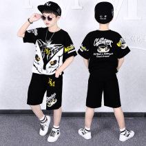 suit Karudi Civet black Golden Deer Black impression deer white golden lion head black color wings white Sanshui deer white 110cm 120cm 130cm 140cm 150cm 160cm 170cm male summer leisure time Sleeveless + pants 2 pieces Thin money There are models in the real shooting Socket nothing Cartoon animation