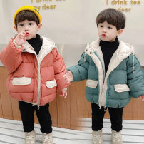 Cotton padded jacket male No detachable cap Cotton 91% - 95% Shang Le Xiong Lake blue brick red 90cm 100cm 110cm 120cm 130cm thickening Zipper shirt Korean version There are models in the real shooting Solid color blending Class A Crew neck Polyester 100% Cotton liner Autumn 2020 winter Huzhou City