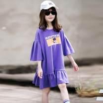 Dress violet female Other / other 110cm,120cm,130cm,140cm,150cm,160cm,165cm Cotton 95% other 5% summer Korean version Short sleeve other cotton other other Class A Chinese Mainland