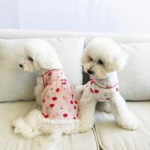 Pet clothing / raincoat currency Dress XS,S,M,L,XL,XXL,XXXL,XXXS,XXS Other / other princess Pink dress, pink vest, white dress, white vest cotton