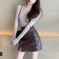Fashion suit Autumn 2020 S. M, l, average size Grey Khaki T-shirt, white T-shirt, brown leather skirt, black leather skirt 18-25 years old
