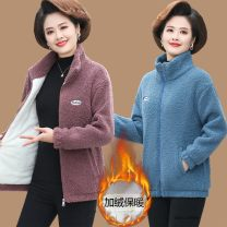 Women's large Spring 2020, winter 2020, autumn 2020 Sweater / sweater singleton  commute easy moderate Cardigan Long sleeves Solid color Simplicity stand collar routine Polyester, polyester printing and dyeing routine 40-49 years old pocket 91% (inclusive) - 95% (inclusive) zipper