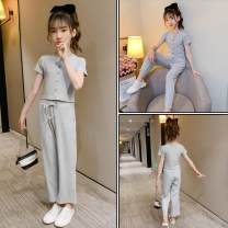 Dress Summer 2020 Gray, black 110cm, 120cm, 130cm, 140cm, 150cm, 160cm, 170cm Two piece set Short sleeve Sweet Crew neck Solid color Socket Others Under 17 Other / other 81% (inclusive) - 90% (inclusive) other cotton