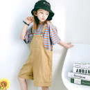 suit Summer is coming female summer leisure time Short sleeve + pants 2 pieces Thin money No model Socket nothing stripe cotton children Learning reward Chinese Mainland Zhejiang Province Huzhou City