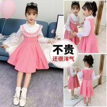 Dress Pink lace dress, Navy lace dress female Year after year 110cm,120cm,130cm,140cm,150cm,160cm Other 100% Solid color other Princess Dress 3 months