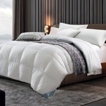 Down / duvet Down quilt 95% (inclusive) - 100% (exclusive) White Velvet Qualified products Canasin  200*230cm220*240cm240*260cm cotton winter Spring and Autumn Vertical lining satin-like cotton fabric Thermal storage