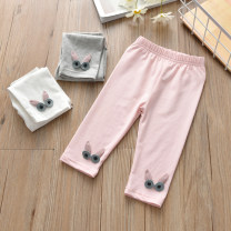 trousers Anemora / Eni Mengmeng female 90cm,100cm,110cm,120cm,130cm Pink, black, light blue, white, gray, white spectacled rabbit x18049, pink spectacled rabbit x18049, gray spectacled rabbit x18049 summer Cropped Trousers leisure time No model Quick drying pants Leather belt middle-waisted cotton