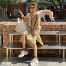 Dress Spring 2021 khaki Average size Mid length dress singleton  Long sleeves commute Polo collar Loose waist Solid color shirt sleeve 18-24 years old Type H Korean version 31% (inclusive) - 50% (inclusive)