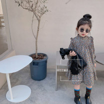 Dress Design and color, leather vest female Other / other 140cm,130cm,120cm,110cm,100cm,90cm Other 100% spring and autumn Korean version Long sleeves Broken flowers cotton A-line skirt other Chinese Mainland Zhejiang Province Hangzhou