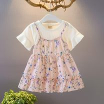 Dress female Jack Yujia M (80 cm), l (90 cm), XL (100 cm), 2XL (110 cm) Polyester 60% other 40% summer princess Short sleeve Broken flowers Chiffon Splicing style G01 Class B 18 months, 2 years, 3 years, 4 years Chinese Mainland Guangdong Province Dongguan City