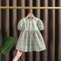 Dress female Dr. Black  90cm,100cm,110cm,120cm,130cm Cotton 95% other 5% summer leisure time Short sleeve Broken flowers cotton A-line skirt Class A 12 months, 9 months, 18 months, 2 years old, 3 years old, 4 years old, 5 years old, 6 years old, 7 years old Chinese Mainland Zhejiang Province