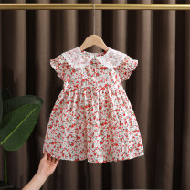 Dress Pink, light blue female Dr. Black  80cm,90cm,100cm,110cm,120cm,130cm Cotton 95% other 5% summer Korean version Short sleeve Broken flowers cotton A-line skirt 2021-4.10-B008 Class A 12 months, 9 months, 18 months, 2 years old, 3 years old, 4 years old, 5 years old, 6 years old, 7 years old