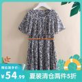 Dress Summer 2020 Foundation printing, blue bottom printing S,M,L,XL,2XL singleton  Sleeveless commute Crew neck middle-waisted Decor Socket other routine Others 25-29 years old Other / other Korean version More than 95% polyester fiber