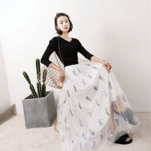 skirt Summer 2020 Skirt length 80 (recommended height below 160), skirt length 90 (recommended height 160-168), skirt length 100 (recommended height 168-175) White feather embroidery, black feather embroidery, pink feather embroidery, beige feather embroidery, black mesh, white mesh, gray mesh dream