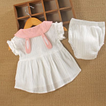 Dress Pink, white female Other / other Cotton 100% summer princess Solid color cotton Princess Dress Class A 3 months, 6 months, 12 months, 9 months, 18 months, 2 years old