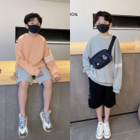 Sweater / sweater Pudding pudding Grey, orange male spring and autumn nothing leisure time Socket routine There are models in the real shooting cotton Solid color Cotton 70.8% polyester 29.2%