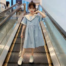 Dress Light blue, blue female Other / other 110cm,120cm,130cm,140cm,150cm,160cm Other 100% spring and autumn princess other other Princess Dress Class B 7, 8, 6, 13, 11, 10, 9, 12 Chinese Mainland Zhejiang Province Huzhou City