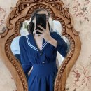 Dress Spring 2021 Navy Blue S,M,L longuette singleton  Long sleeves commute V-neck High waist Solid color zipper A-line skirt bishop sleeve Others 18-24 years old Type A Korean version zipper 71% (inclusive) - 80% (inclusive) other cotton