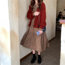 Dress Winter of 2019 Average size Other / other