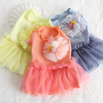 Pet clothing / raincoat currency Dress Petstyle princess