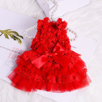 Pet clothing / raincoat currency Wedding dress XS,S,M,L,XL Other / other princess White, pink, red, new Sequin red, new Sequin powder Lace