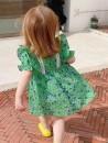 Dress green female Other / other 90cm,100cm,110cm,120cm,130cm Other 100% summer princess Short sleeve Broken flowers other Princess Dress 7 years old, 8 years old, 12 months old, 3 years old, 6 years old, 18 months old, 9 months old, 2 years old, 5 years old, 4 years old, 10 years old, 9 years old