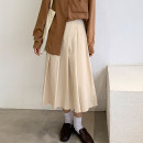skirt Autumn 2020 S,M,L Apricot, black Mid length dress commute High waist A-line skirt Solid color Type A 18-24 years old 71% (inclusive) - 80% (inclusive) other polyester fiber zipper Korean version