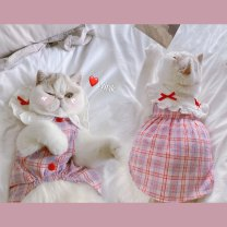Pet clothing / raincoat currency Dress Other / other leisure time cotton