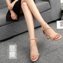 Sandals 33 34 35 36 37 38 39 40 Black heel height 5.5cm black heel height 7.5cm apricot heel height 5.5cm apricot heel height 7.5cm Other / other Suede Barefoot Thick heel High heel (5-8cm) Spring of 2018 Korean version Solid color Adhesive shoes Youth (18-40 years old) rubber daily Ankle strap