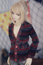 BJD doll zone jacket 1/3 Over 14 years old Picture color