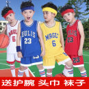 Basketball clothes Red 23, blue 23, white 23, yellow 23, red 6, blue 6, white 6, yellow 6 RuFu S-yard, 100-110 cm, M, 110-120 cm, L-yard, 120-130cm, XL, 130-140 cm, 2XL, 140-145 cm, 3XL, 145-150 cm, 4XL, 150-160cm, 5XL, 160-170cm child Set year 2010 Dongguan New Century