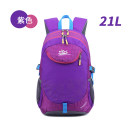 Backpack Other / other Navy navy navy Purple Black Rose 20-35 liters children ZY-901 General camping / hiking yes yes