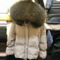 Down Jackets Other/others White duck down Winter of 2018 80% S M L Long sleeve Short paragraph Thicken Commuting 150g (inclusive) -200g (excluding)