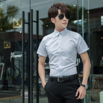 shirt Business gentleman Others M L XL 2XL Thin money Short sleeve Pointed collar (regular) Self cultivation go to work summer teenagers Polyester 100%