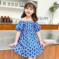 Dress Graph color female Other / other The recommended height is 90cm for size 7, 100cm for size 9, 110cm for size 11, 120cm for size 13 and 130cm for size 15 Other 100% summer princess Short sleeve Broken flowers other other Class B