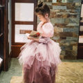 Dress Pink female Other / other 100cm,110cm,120cm,130cm,140cm Other 100% Long sleeves other Fluffy skirt Three, four, five, six, seven, eight