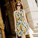 Dress Spring 2013 Blue, orange One singleton  Sleeveless commute Crew neck AKA Korean version More than 95%