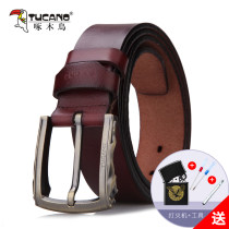 Belt / belt / chain Double skin leather Earthy brown reddish brown black male belt leisure time Single loop Youth and middle age Pin buckle Glossy surface soft surface 3.8cm alloy alone Tucano / woodpecker WDD9222 Autumn and winter 2017