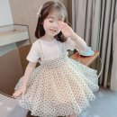 Dress White, black, spring and autumn long sleeve white, spring and autumn long sleeve black, spring and autumn long sleeve pink female Other / other 80cm,90cm,100cm,110cm,120cm Other 100% summer Korean version Short sleeve Dot other Lotus leaf edge other Chinese Mainland