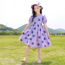 Dress female Youmi house 120cm 130cm 140cm 150cm 160cm 170cm Other 100% summer lady Short sleeve Dot other A-line skirt Summer 2020 5 years old, 6 years old, 7 years old, 8 years old, 9 years old, 10 years old, 11 years old, 12 years old, 13 years old, 14 years old