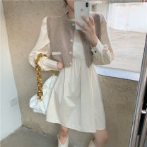 Fashion suit Winter 2020 Average size Red dress, apricot dress, red vest, apricot vest 18-25 years old