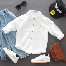 shirt Other / other neutral spring and autumn Long sleeves Korean version Solid color cotton Lapel and pointed collar Cotton 95% polyurethane elastic fiber (spandex) 5% Class B