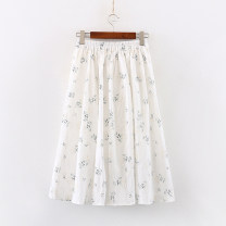 skirt Summer 2020 Average size white commute A-line skirt Broken flowers 18-24 years old 81% (inclusive) - 90% (inclusive) cotton Embroidery literature