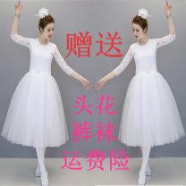 Ballet Costume Alba Dance Costume female Adult white lace skirt, adult red lace skirt, adult pink lace skirt, children's white lace skirt remark size, children's Red Lace Skirt remark size, children's Pink Lace Skirt remark size S. M, l, XL, XXL, XXXL, larger
